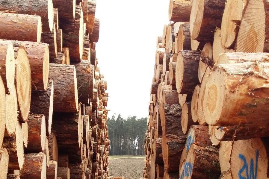 ForstbetriebHaas_Holzpolter