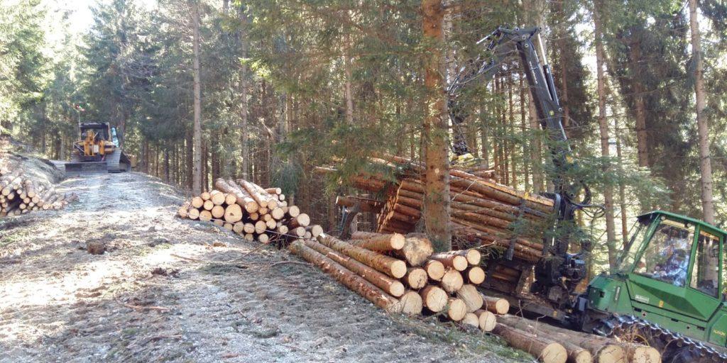 Forstbetrieb_Haas_Traktionswinde_Holzernte